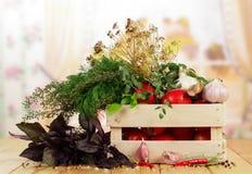 Tomates y eneldo en cajón Fotografía de archivo