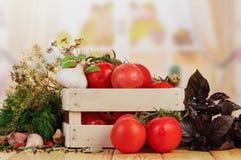 Tomates y eneldo en cajón Fotos de archivo
