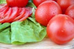 Tomates y ensalada Fotos de archivo