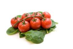 Tomates y ensalada de la espinaca Foto de archivo