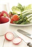 Tomates y ensalada de los rábanos Foto de archivo libre de regalías