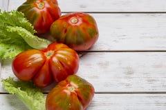 Tomates y ensalada rojos en el tablero de madera blanco Imagen de archivo