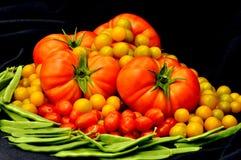Tomates y habas verdes Foto de archivo