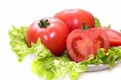 Tomates y lechuga frescos en un fondo blanco Imagen de archivo libre de regalías