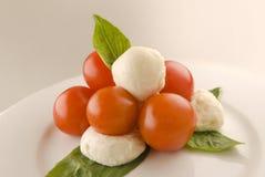 Tomates y mozarela con albahaca fresca Fotos de archivo libres de regalías