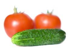 Tomates y pepino orgánicos Foto de archivo libre de regalías