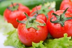 Tomates y pepinos Imagen de archivo libre de regalías