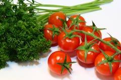 Tomates y perejil de cereza Fotografía de archivo libre de regalías