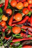 Tomates y pimientas de chiles Foto de archivo