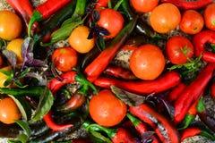 Tomates y pimientas de chiles Fotografía de archivo