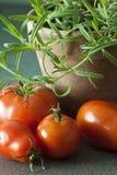 Tomates y romero. Fotografía de archivo