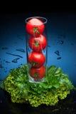 Tomates y verdor en agua Foto de archivo