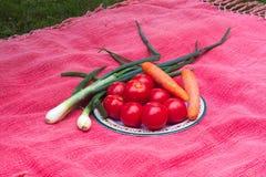 Tomates, zanahorias y cebollas frescos de las verduras del jardín Imagen de archivo