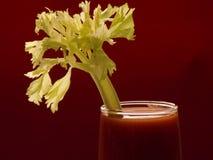 Tomatesaft II Lizenzfreie Stockfotografie
