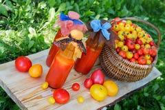 Tomatesap in een fles Stock Afbeeldingen