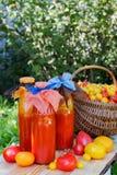 Tomatesap in een fles Royalty-vrije Stock Foto