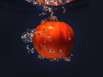 Tomatfärgstänk Royaltyfri Bild
