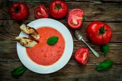 Tomatförkylningsoppa Fotografering för Bildbyråer