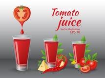 Tomatfruktsaft med ost, chily, persilja- och tomatsidor Royaltyfri Bild
