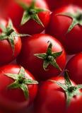 Tomatgruppcloseup Arkivfoton