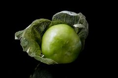 Tomatillo Стоковые Изображения RF