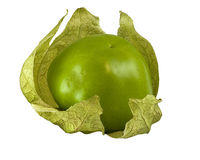 Tomatillo Royalty Free Stock Photography