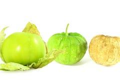 Tomatillo eller tomatfrukt eller grönsak för mexikan grön royaltyfri bild