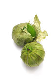 Tomatillo With Husk Stock Photos