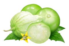 Tomatillo husk tomato, physalis. Tomatillo or Mexican husk tomato Physalis philadelphica fruit husked, with flower and leaves stock photos