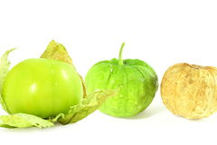 Tomatillo or mexican green tomato fruit or vegetable Royalty Free Stock Image