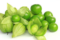 Tomatillo. Or Mexican husk tomato (Physalis philadelphica Stock Photography