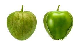 Tomatillo Pair som isoleras på vit arkivfoton