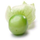 Tomatillo & x28; Philadelphica& x29 del Physalis; , percorsi Fotografie Stock