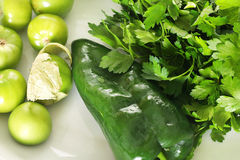 Tomatillo salsa ingredients. Shot of tomatillo salsa ingredients Stock Photo