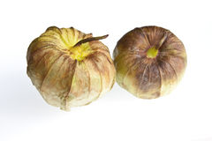 Tomatillos. Two tomatillos in their husks isolated against a white background Stock Images
