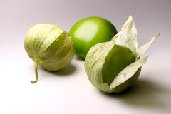 Tomatillos. On white Background Stock Image