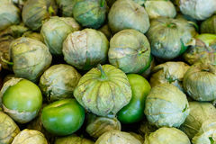 Tomatillos Stock Fotografie