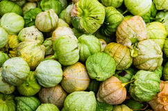 Tomatillos on display at market Stock Photography