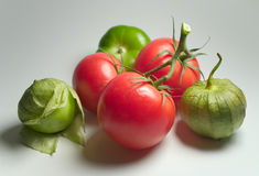 Tomatillos e pomodori Fotografia Stock