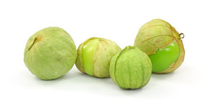 Tomatillos Group Four Royalty Free Stock Image