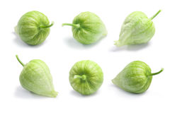 Tomatillos Physalis philadelphica, paths Royalty Free Stock Photos