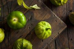Tomatillos verde orgánico sano fotografía de archivo
