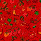 Tomatmodell 01 A Arkivfoton