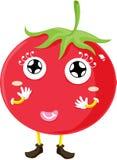 Tomato stock illustration