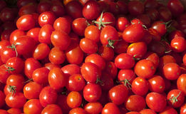 Tomato Royalty Free Stock Photo