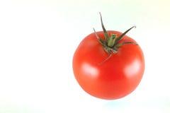 Tomato. Fresh red tomato isolated on white background Royalty Free Stock Image