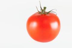 Tomato. Fresh red tomato isolated on white background stock image