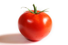 Tomato. Juicy tomato with a shadow Royalty Free Stock Images