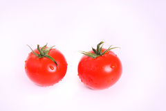Tomato. Two tomatoes on a withe isolated background with copy space Royalty Free Stock Image
