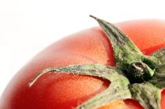 Tomato. The tomato in the white background Royalty Free Stock Image